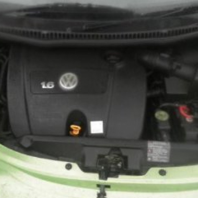 Enginesod 1 6 Beetle Engines